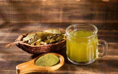 Buy coca tea online in the United Kingdom
